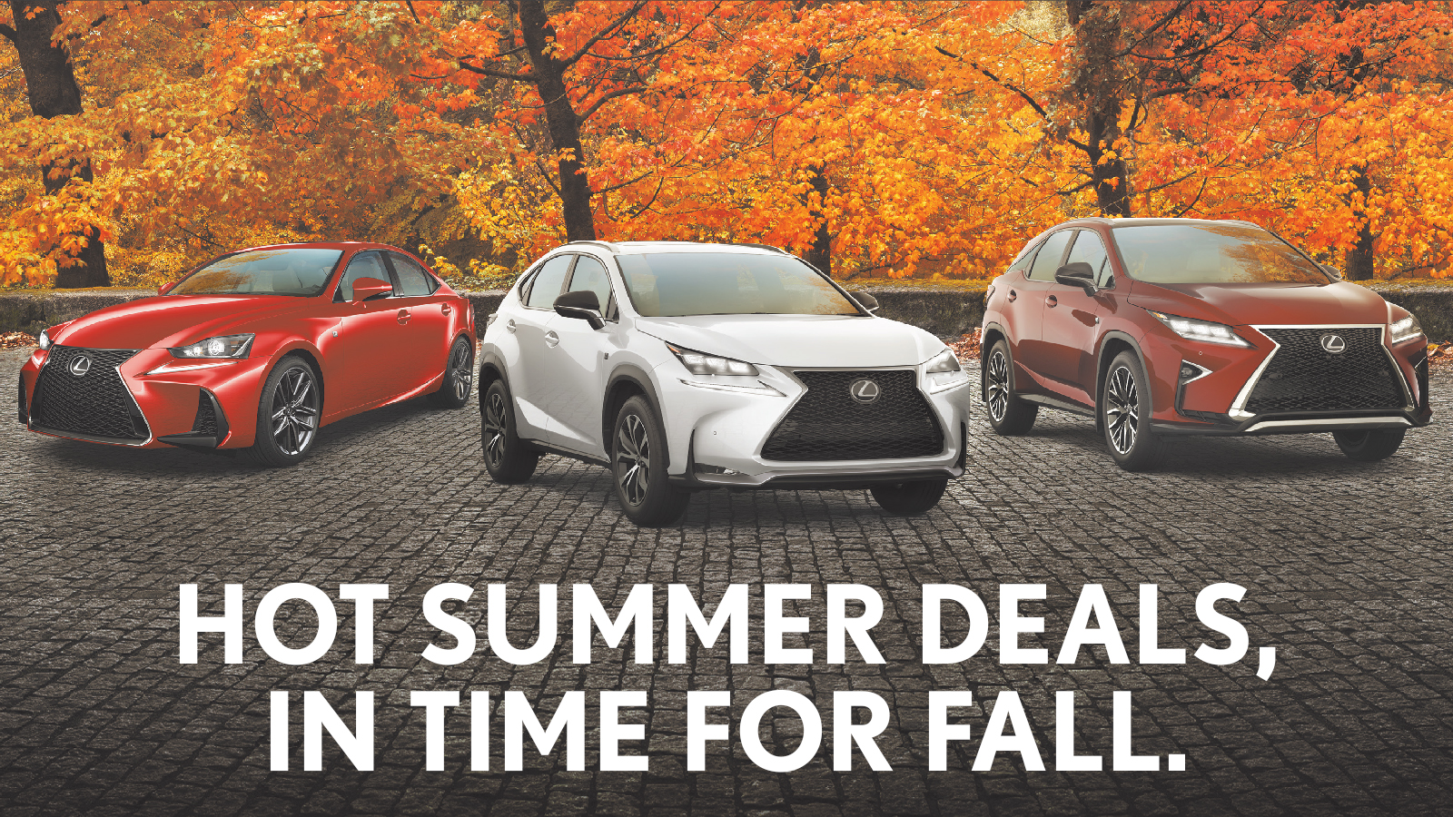 Fall Promotions
